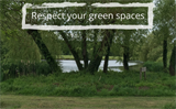 Green space - trees, water and grass